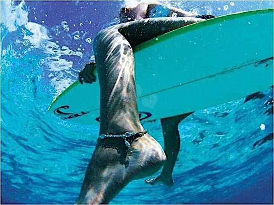 Wassersport ist mein schönstes Hobby - SurferGirl 27937007